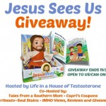 Jesus-Sees-Us-Doll-and-Book-Giveaway-from-Life-in-a-House-of-Testosterone-500x421