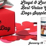 Lloyd-Lucys-Pet-Supplies-Best-Value-Glucosamine-for-Dogs-Supplement-Giveaway